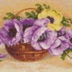 cosulet cu anemone 1