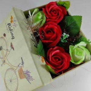 cutie mare bici mov rosu