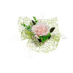 austin roz