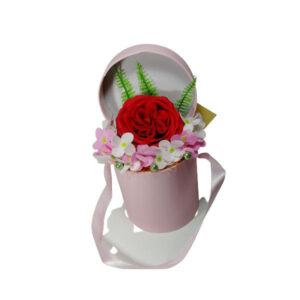 cutie roz