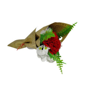 trandafir garoafa rosie 1